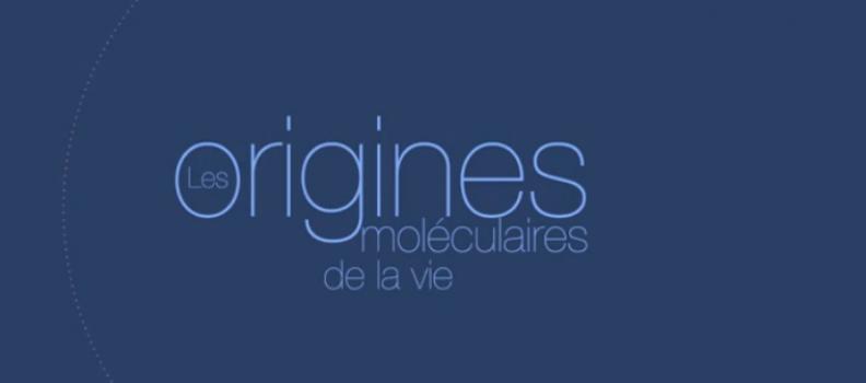 MOOC : Les origines moléculaires de la vie